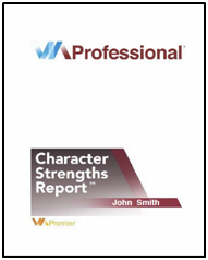 The VIA Professional Character Strengths Report